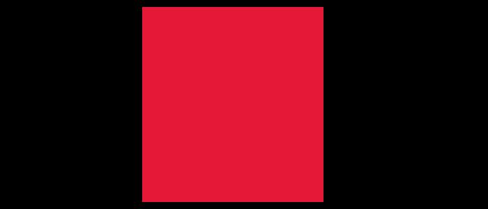 Courage Group Logo